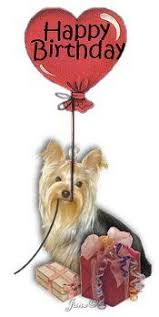 Image result for Happy Birthday Yorkshire terrier