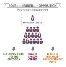 what is the role of opposition in democracy leader of the opposition learning parliamentary education