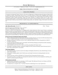 Finance Director Resume  finance director resume director of     Financial Resume Objective Examples   finance director resume