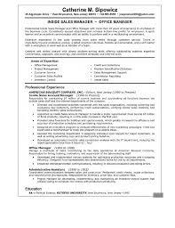 Sample Resume Computer Sales Manager