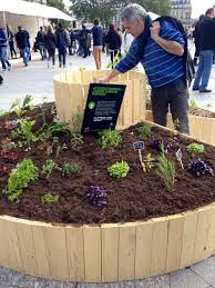 Permaculture Garden Design Ideas Keyhole Keyhole Garden Beds How To Make A Keyhole Garden Raised