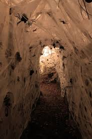 CREATE A TUNNEL HAUNTED BY SPIDERS