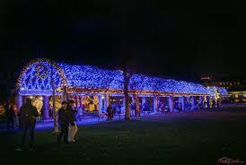 trellis lighting. Patrons Walk Around The Newly Lit Blue Trellis Lighting T