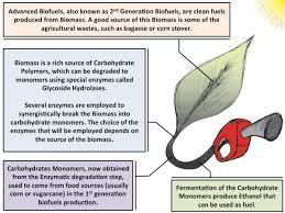 on biofuels essay on biofuels