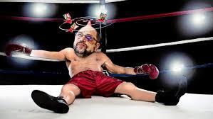 Image result for martin schulz boxer