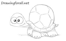 Small Picture How to Draw a Cartoon Turtle DrawingForAllnet