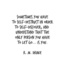 Self Discovery Quotes Classy 48 Of The Best RM Drake Quotes