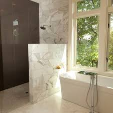 Spaces Doorless Shower Design, Pictures, Remodel, Decor and Ideas - page 31