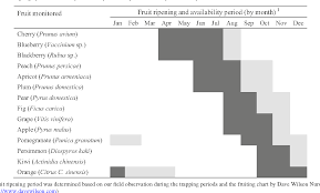 Blackberry Ripening Chart Table 3 From Population Dynamics And Ecology Of Drosophila