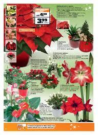 Obi Angebote Weihnachten Mit Obi Seite No 612 Gültig