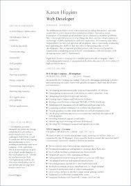 Web Resume Examples Web Resume Examples Examples Of Resumes Web