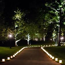 outdoor tree lighting ideas. Image Of: Outdoor Tree Lights Home Design Ideas And Pictures In  Lighting Designs Outdoor Tree Lighting Ideas