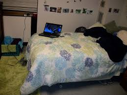 awesome college dorm bedding with purple rug and black blanket also white wall color plus picture frame for cute bedroom ideas for teenage girls