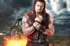 r reigns net worth income profile and salary 2017