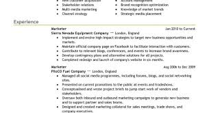 Nanny Resume Examples Broadcast Traffic Manager Sample Resume