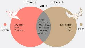 Examples Of Venn Diagram Problems With Answers Venn Diagram Examples Problems Solutions Formula Explanation