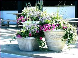 unique outdoor planters unique outdoor planters unique outdoor planters ideas ideas for outdoor planters in the
