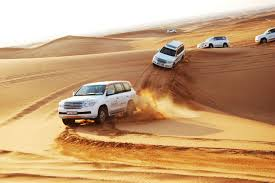 Image result for dubai desert safari