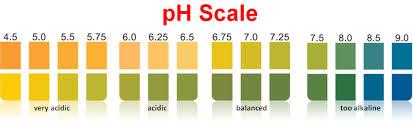 Ph Color Chart Aa Grade Ph Test Strips 2 3 4 Color Chart 0 14 4 5 9 0 4 0 8 5 Buy Ph Test Ph Test Strips Ph Paper 0 14 Product On Alibaba Com