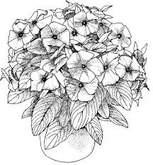 Adult Flower Coloring Pages Free Printable Flower Coloring Pages
