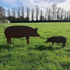 rusty pig signs metal home garden