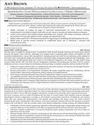 Senior It Consultant Resume Sample Management Consulting Resume