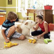 kids on a carpet with the family dog