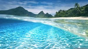 underwater beautiful summer wallpaper