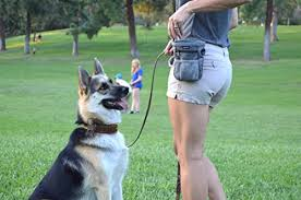 best dog treat pouch
