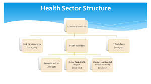 Saskatchewan Health Authority Organizational Chart Health Sector