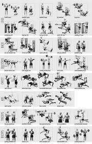 Best Bodybuilding Exercises With Great Results Gym Workout