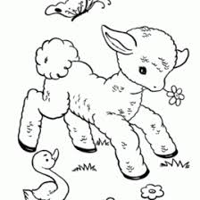 Small Picture Coloring Pages Of Spring Animals Archives Mente Beta Most