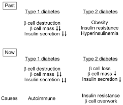 type diabetes essay case study on diabetes type write my essay  ijms full text postprandial c peptide to glucose ratio as ijms 17 00744 g001 1024