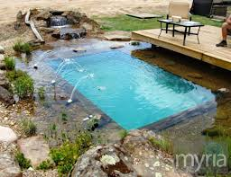 natural looking in ground pools. Cute Small Natural Swimming Pool Looking In Ground Pools