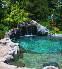 Small Natural Pool Designs Swimming Pools Backyard Landscaping Great