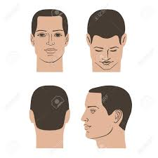 男髪型頭 フロントバックサイド ビュー を設定ベクトル イラスト