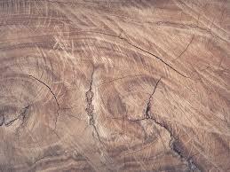 Holz Dekocom Deko Unikate Aus Holz Neukirchenartikel