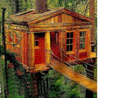 treehouse furniture ideas. Treehouse Furniture Australia Bedroom Unusual Design Ideas Of Cool Kid With Tree House Beds For Ikea