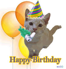 funny gif with cats happy birthday message