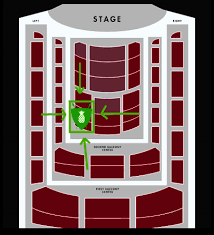 Boston Symphony Hall Holiday Pops Seating Chart Bso Holiday Pops The Welcoming Committee