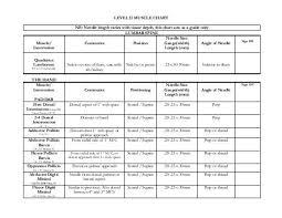 Level Ii Muscle Chart Nb Needle Length Varies Kinetacore