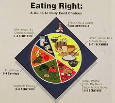 Food Pie Chart Usda Why Its Good That The Food Pyramid Became A Plate The