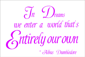 Harry Potter Dreams Quote Best of Harry Potter Wall Quote 24 IN DREAMS