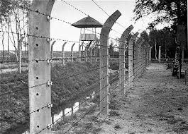 barbed wire fence holocaust. Plain Holocaust The Barbed Wire Fence And A Watch Tower At Vught After The Liberation Of  Camp Photo Credit Glowna Komisja Badania Zbrodni Przeciwko Narodowi Polskiemu  For Barbed Wire Fence Holocaust T