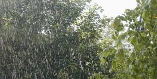 Resultado de imagen para lluvias