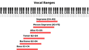 What Is My Voice Type