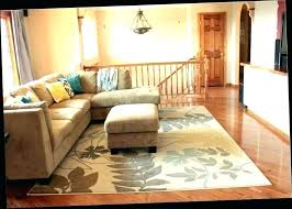 nice living rooms modern nice living room floor rugs 6 small area rug placement for near