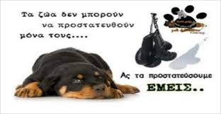 Image result for ΑΔΕΣΠΟΤΩΝ ΖΩΩΝ