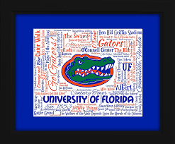 university of florida uf 16x20 art piece beautifully matted and framed behind gl