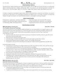 Sample Marketing Executive Resume Marketing Executive Resume Sample ...
